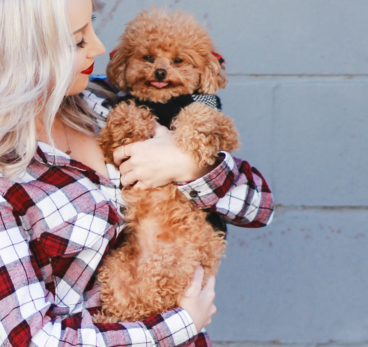 Plaid Button Up | StyledByBlondie.comPlaid Button Up + Red Maltipoo | StyledByBlondie.com